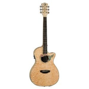 luna-hummingbird-electro-acoustic