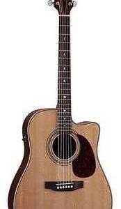 Luna Americana Electro acoustic