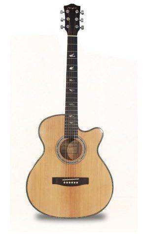 Martin Smith W-401E electro acoustic